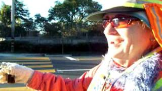 picture of Crossing Guard
