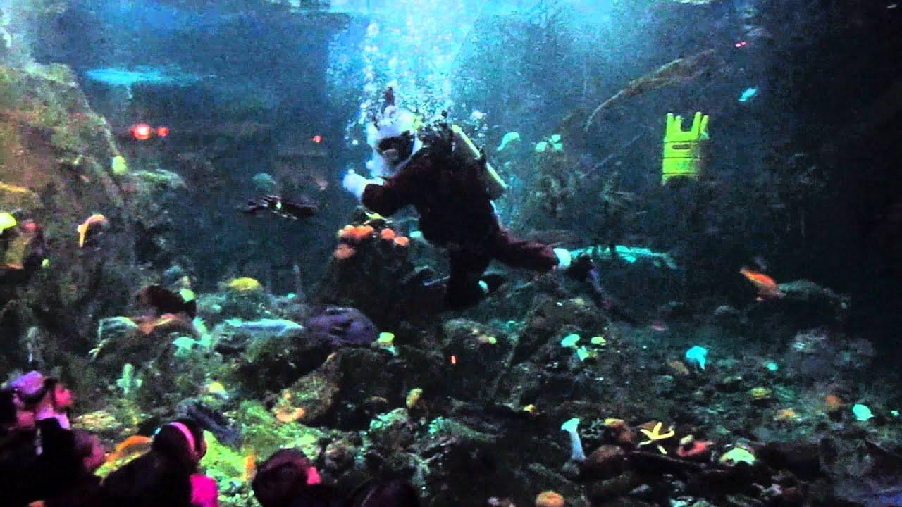 Scuba Claus Show Vancouver Aquarium 2011 Youtube