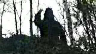 "SCIENTISTS SAY ""SHOCKING SASQUATCH VIDEO IS REAL"