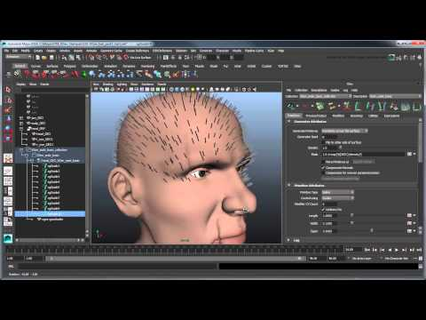 Maya Tutorial: Creating XGen hair - Part 1: Basic hair