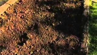 La huerta en otoño