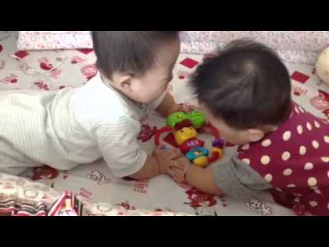 twin are fighting over a toy (si kembar berebut mainan)