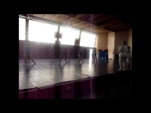 Sporting club seyssuel fédéral de gymnastique 2014