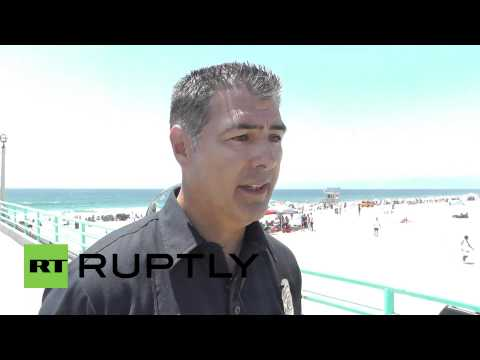 USA: Man attacked by great white at popular Manhattan Beach