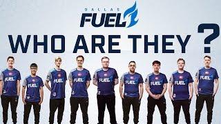 Dallas Fuel - Who Are They?