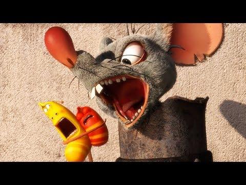 Larva - Pasca na myš