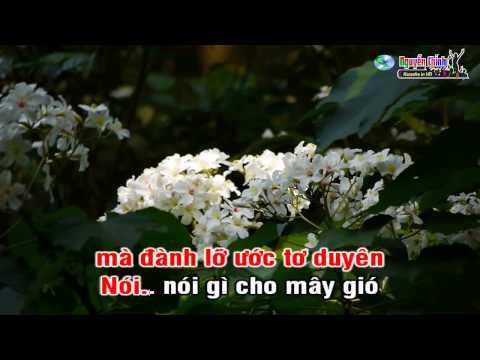 karaoke Những đồi hoa sim [tone nam]