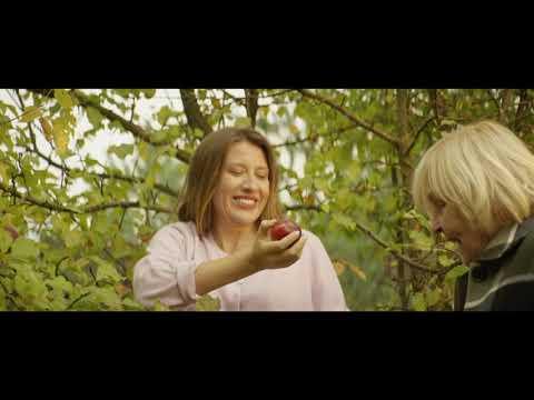 Олег Винник — Роксолана