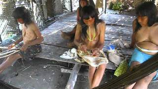 Amazon Explorer Expedition To The Matses Tribe Peru