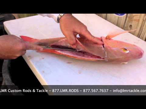 How to Fillet a Mutton Snapper - LMR Tackle