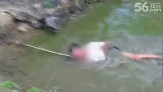 Hombre recibe descarga de anguila eléctrica