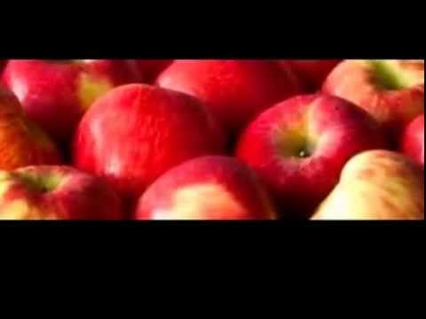 Whole Foods Vitamins - Healthy Food Recipes - Organic Bread