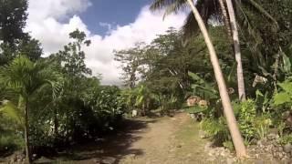 Arriving by car at Citrus Creek Plantation & Riverside Café, Taberi , La Plaine, Dominica. - Courtesy of OceanIslandTravel.com