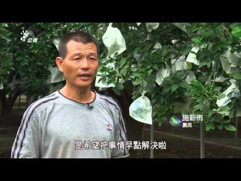 我們的島 第717集 公害糾紛自保術 (2013-07-29) - YouTube