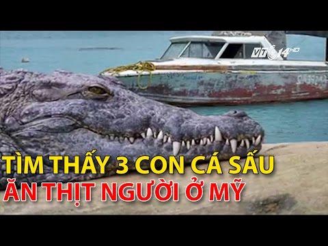(VTC14)_Tìm thấy 3 con cá sấu ăn thịt người ở Mỹ