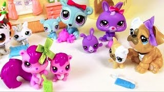LPS Mommies Series Mommy And Baby Littlest Pet Shop HAUL