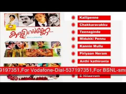 Kallipenne | Malayalam Mappila Album