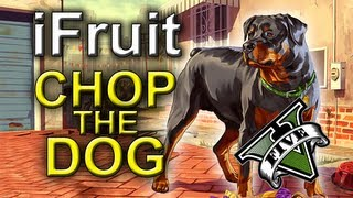 IFruit App Chop The Dog : GRAND THEFT AUTO 5 IPhone