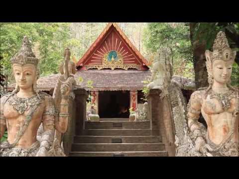 visit wat palad (chiang mai)