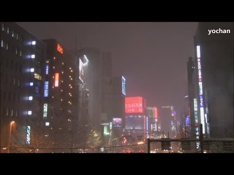 "Blizzard in Shinjuku, Tokyo ""Skyscrapers & Downtown area""  大吹雪になった東京・新宿の様子 2014/2/8"