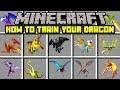 Minecraft HOW TO TRAIN YOUR DRAGON MOD TAME YOUR VERY OWN DRAGON Modded Mini Game
