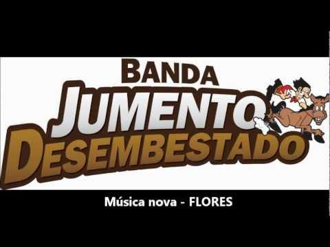 JUMENTO DESEMBESTADO | MÚSICA NOVA - FLORES - 2012