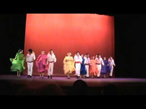 Michoacan (Apatzingan) - Grupo de danza
