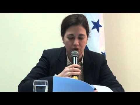 Rashida Manjoo, Relatora de la ONU