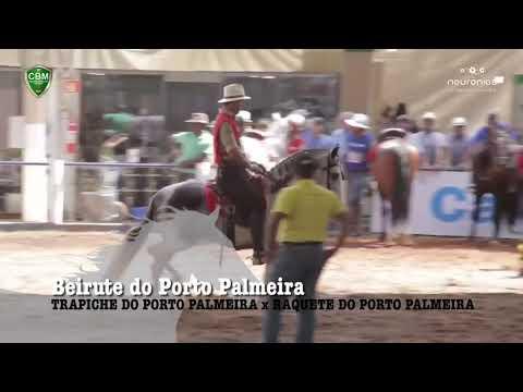 DESTAQUE NACIONAL - BEIRUTE DO PORTO PALMEIRA - MANGALARGA MARCHADOR
