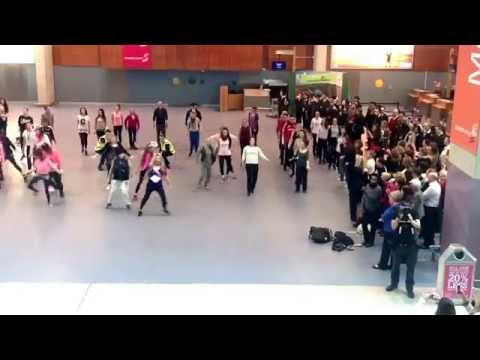 FLASHMOB at Shannon Airport