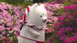 しっぺいPV~2015しっぺいの春~