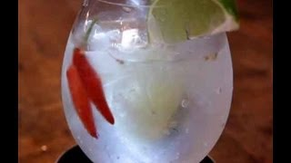 Spicy Gin and Tonic Recipe..