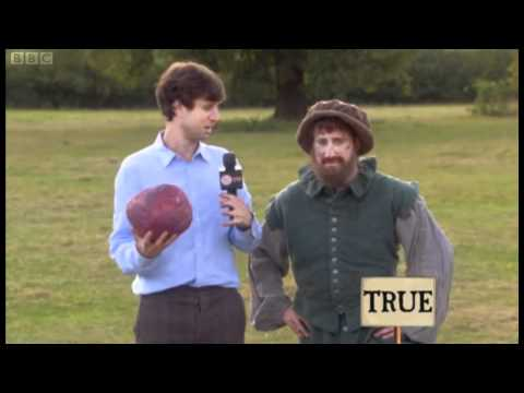 Horrible Histories Tudor Football