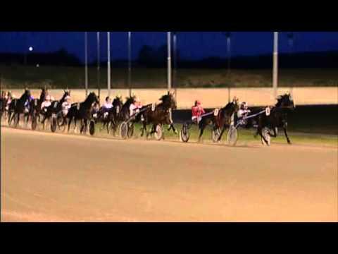 Vidéo de la course PMU PRIX RUSSEL NOVEMBER
