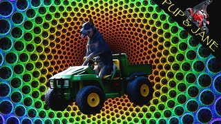 Dog Drives John Deere Gator by Himself