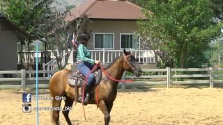 มาดูสาวๆ Xtreme Girls ในภารกิจฝึกขี่ม้ากันเถอะ  Ep.7-1