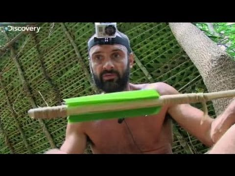 Discovery TV - YouTube