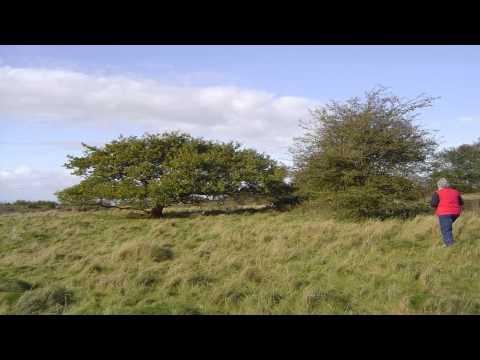Dolebury Warren Hillfort Peterborough Cambridgeshire