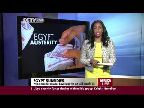 Egypt Subsidy Reform Set To Prioritize Health Care And Education