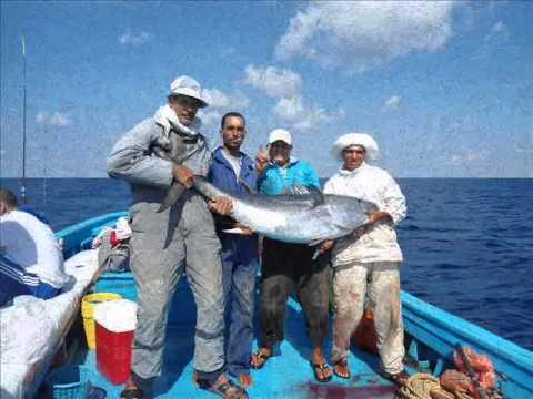 رحلات فريق عمر الصياد 27-9-2013 وصيد سمكة التونة الزرقاء