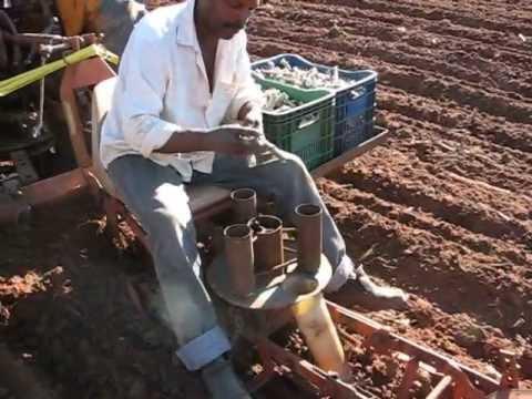 Plantadeira de mandioca parte 1