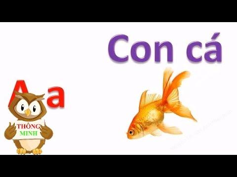 Bảng chữ cái tiếng việt cho bé | dạy bé học đọc chữ cái abc | dạy trẻ thông minh sớm 1