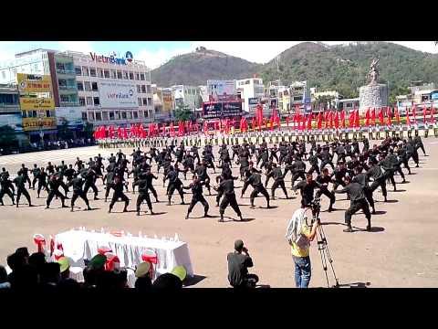 Hội thao Điều lệnh Quân sự Võ thuật năm 2014