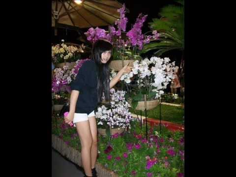 12 Tháng cô đơn - Le Thao Lee