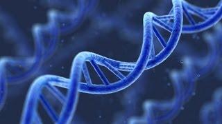 DNA Cywilizacji 18.11.2012