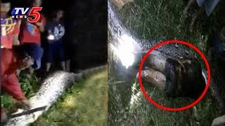 Must watch: Python swallows man in Indonesia..