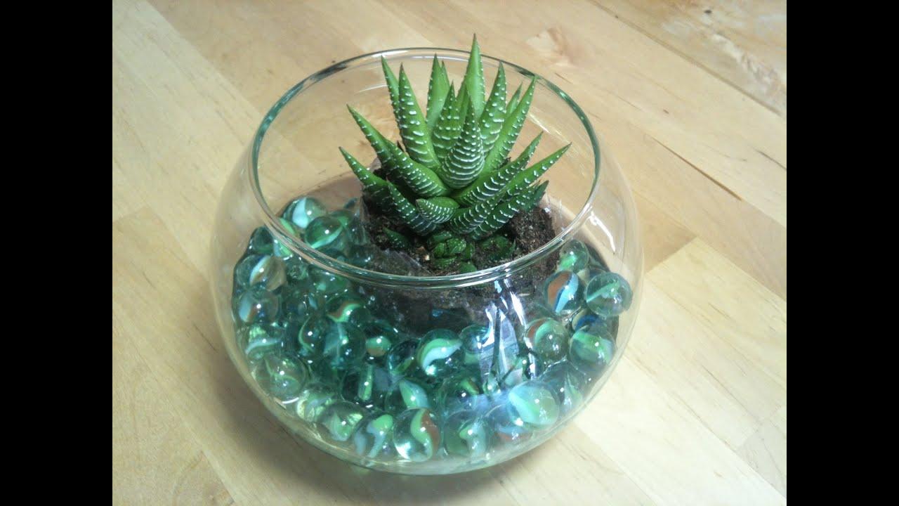 C mo hacer un centro de mesa con cactus y pecera - Pecera de pared ...