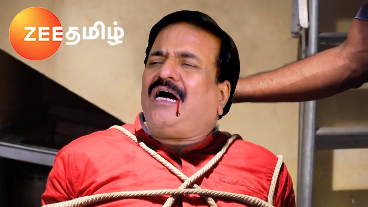 Neethane Enthan Ponvasantham (நீதானே எந்தன் பொன்வசந்தம்) | 23.09.2021 | Zee Tamil | Review |
