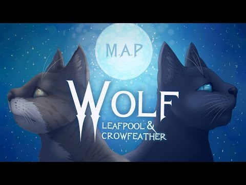 Wolf - Leafpool & Crowfeather [Complete Warrior Cats M.A.P]