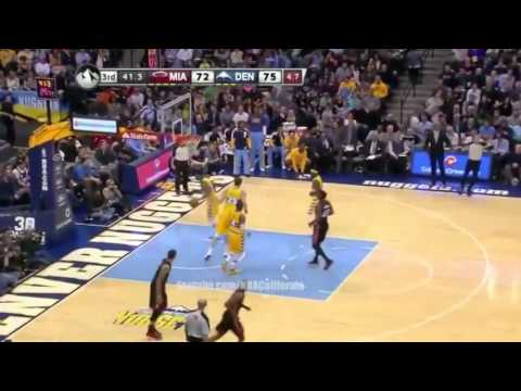 LeBron James' Highlights   Miami Heat vs Denver Nuggets   December 30  2013   NBA 2013 14 Season